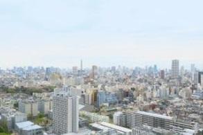 ラ・トゥール新宿ガーデン 2408の写真9
