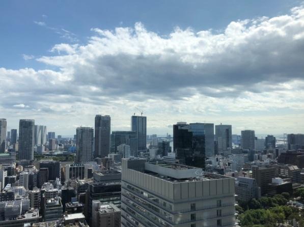 愛宕グリーンヒルズフォレストタワーの写真4