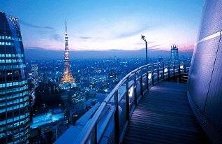 愛宕グリーンヒルズフォレストタワー 4003の写真5