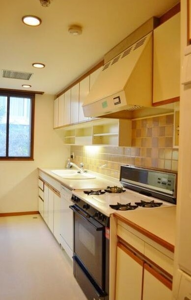 元麻布テラスアパートメント 202の写真3