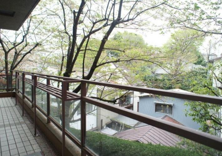 元麻布テラスアパートメントの写真5