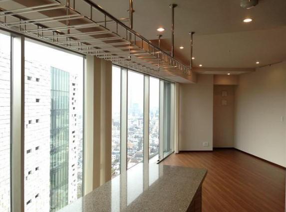 コンフォリア新宿イーストサイドタワー 2719の写真3
